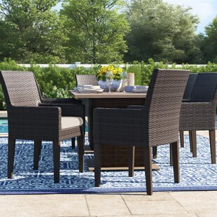 Tegan Patio Dining Chair with Cushion (Set of 6)