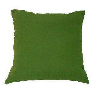 https://secure.img1-fg.wfcdn.com/im/83822528/resize-h310-w310%5Ecompr-r85/3906/39064348/amplas-canvas-throw-pillow.jpg