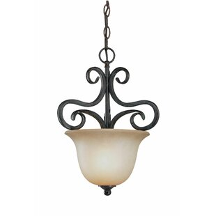 Fleur De Lis Living Wiliams 1-Light Urn P..