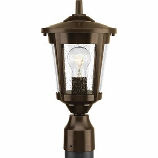 Duke 1-Light Metal Lantern Head