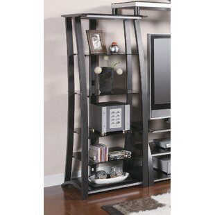 Metal Multimedia Storage Rack