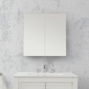 Best Reviews Adonis 23.63 x 23.63 Surface Mount Medicine Cabinet By Wrought Studio
