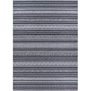 Amasa Black/Gray Indoor/Outdoor Area Rug