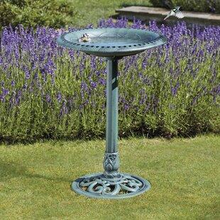 Totten Bird Bath By Sol 72 Outdoor