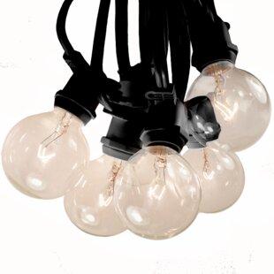 Hometown Evolution, Inc. 20-Light Globe String Lights