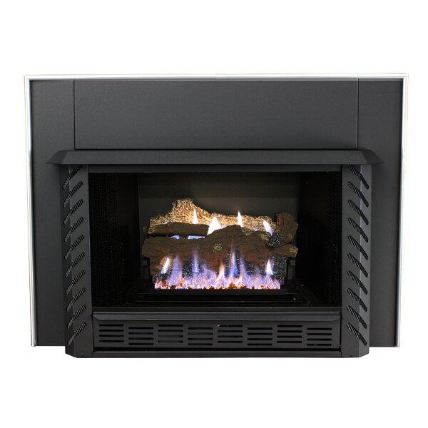 - Ashley Hearth Vent Free Propane Fireplace Insert & Reviews Wayfair