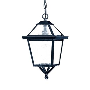Britannia 1-Light Outdoor Hanging Lantern