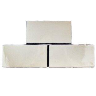 Antiqua 3 x 6 Ceramic Subway Tile in Craquelle White by EliteTile