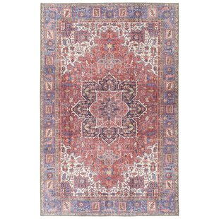 Olinger Red Indoor/Outdoor Area Rug