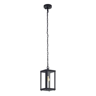 Luciano 1 Light Outdoor Hanging Lantern By Brambly Cottage