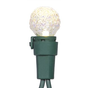 Vickerman 16.33 ft. 50-Light Globe String Lights
