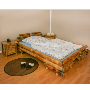 Trujillo Queen Sized Double Bed By Bay Isle Home