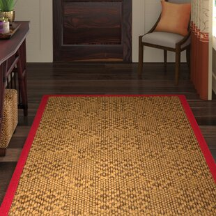 Camile Hand Woven Brown Area Rug by World Menagerie