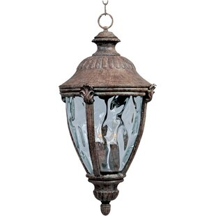 Velma 3-Light Outdoor Hanging Lantern by Fleur De Lis Living