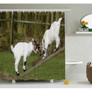 Animal Farm Life with Goats Single Shower Curtain