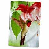 Hummingbird Towels Wayfair