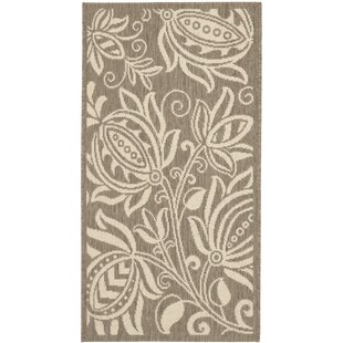 Marcella Brown/Tan Indoor/Outdoor Area Rug