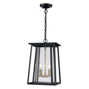 Gracie Oaks Ben 2-Light Outdoor Hanging Lantern