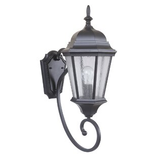 Darby Home Co Ladonna Outdoor Sconce