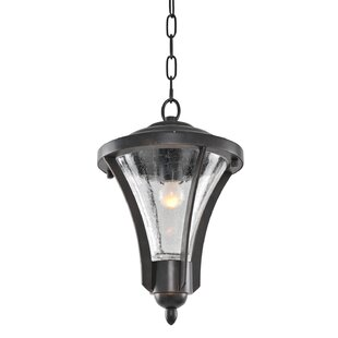 Kalco Lincoln 1-Light Outdoor Pendant
