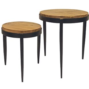 Phelps 2 Piece Nesting Tables