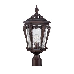 Berrios Outdoor 1-Light Lantern Head