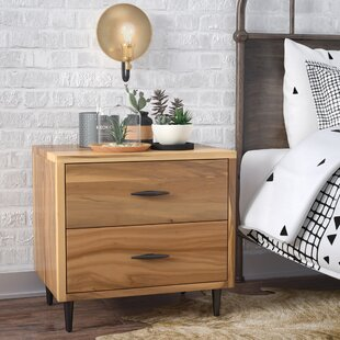 Montes 2 Drawer Night Stand by Union Rustic