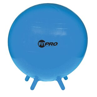 Fitpro Ergonomic Ball Chair
