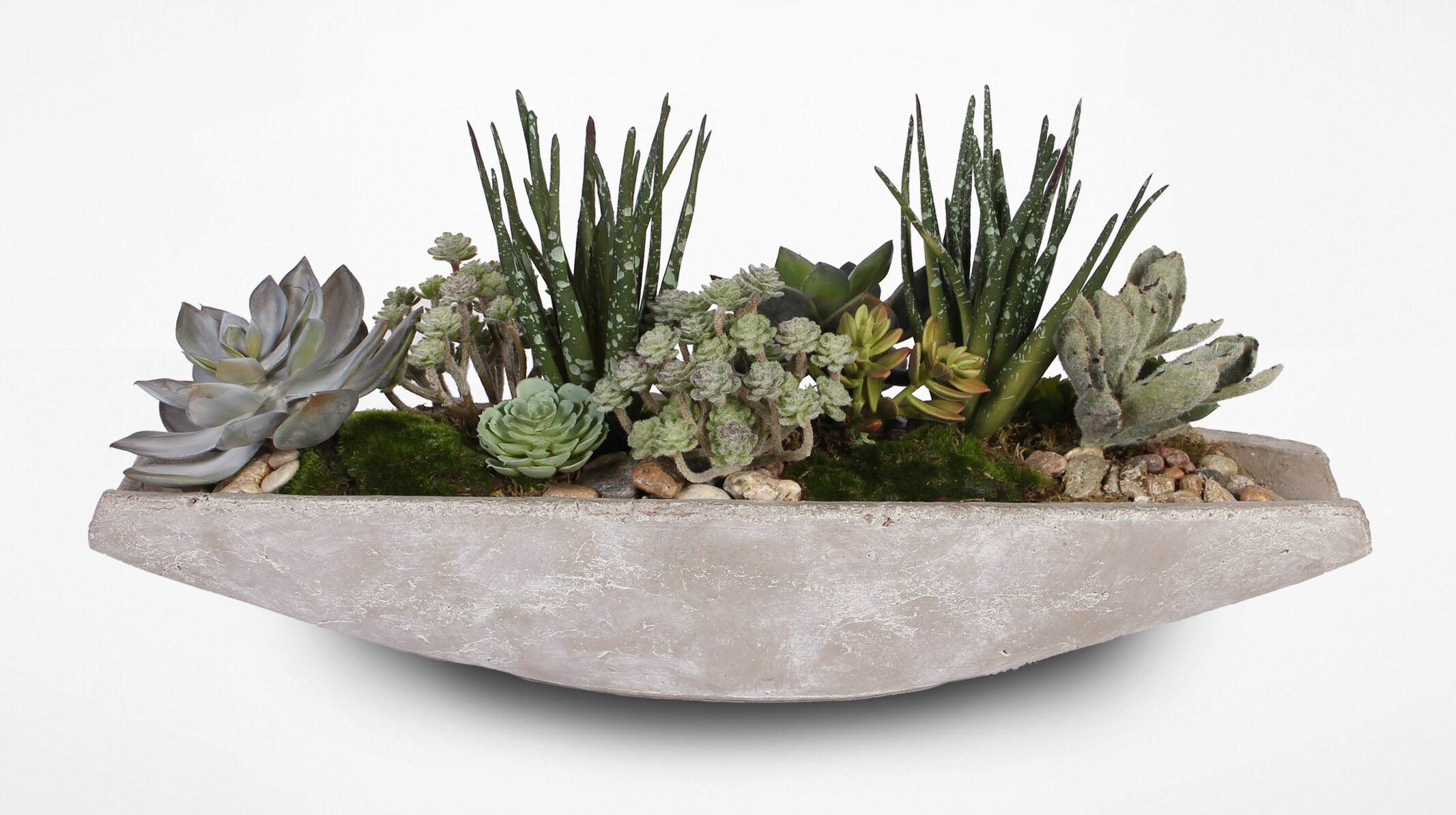 Bungalow Rose Assorted Artificial Aloe Succulent With Natural Pebbles Wayfair