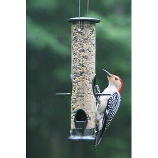 Birds Choice Low Cost Large Tube Bird Feeder