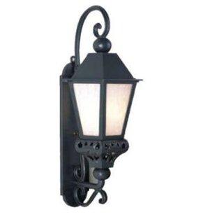 Phillipstown 1-Light Outdoor Wall Lantern