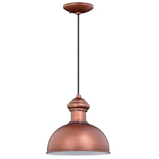 Breakwater Bay Binne 1-Light Outdoor Pendant