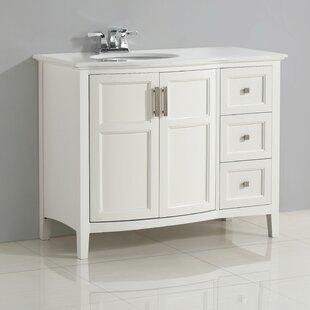 Winston 43 Single Bathroom Vanity By Simpli Home