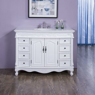 Schuyler 48 Single Bathroom Vanity Set