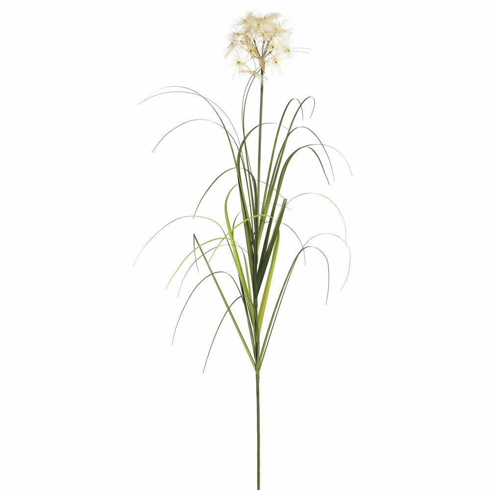 Millwood Pines 3 Piece Dandelion Agave Grass Reviews Wayfair