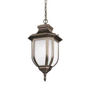 Teri 1-Light Outdoor Hanging Lantern by Fleur De Lis Living