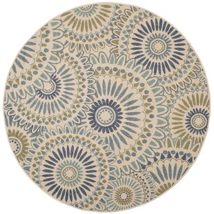 Caroline Gray/Ivory/Blue Indoor/Outdoor Area Rug by Safavieh