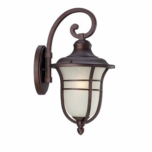 Berryhill 1-Light Outdoor Wall Lantern