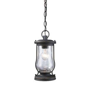 Breakwater Bay Crutchfield 1-Light Outdoor Hanging Lantern