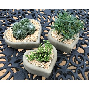 Pieper 3 Piece Stone Plant Pot Set By Sol 72 Outdoor