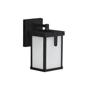 Julien 1-Light Outdoor Wall Lantern