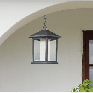 Andover Mills Olive 1-Light Outdoor Hanging Lantern