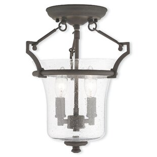 Richard 2-Light Semi-Flush Mount by Darby Home Co