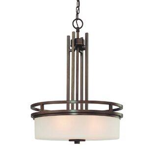 Dolan Designs Multnomah 3-Light Pendant
