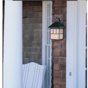 Online Reviews Bushman 1-Light Outdoor Wall Lantern By Darby Home Co