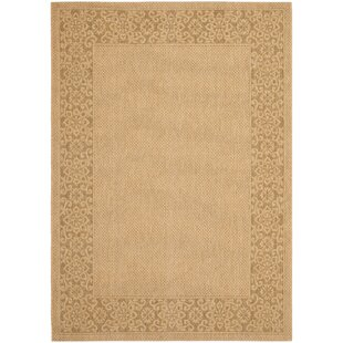 Beige / Natural Indoor/Outdoor Area Rug