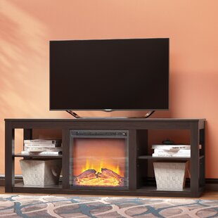 Rickard TV Stand for TVs up to 65 with Fireplace by Zipcode Design