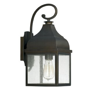 Arnette 1-Light Outdoor Wall Lantern