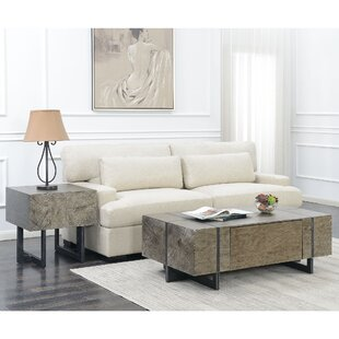 Nieves 2 Piece Coffee Table Set by Brayden Studio