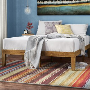 Best Deals Alexandra Platform Bed by Turn on the Brights Reviews (2019) & Buyer's Guide
